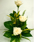 send gifts to bangladesh, send gift to bangladesh, banlgadeshi gifts, bangladeshi Thailand White Rose