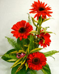 send gifts to bangladesh, send gift to bangladesh, banlgadeshi gifts, bangladeshi Thai Red Gerbera