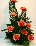 send gifts to bangladesh, send gift to bangladesh, banlgadeshi gifts, bangladeshi Carnations