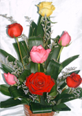 send gifts to bangladesh, send gift to bangladesh, banlgadeshi gifts, bangladeshi Thailand  Mix Rose