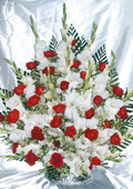 send gifts to bangladesh, send gift to bangladesh, banlgadeshi gifts, bangladeshi Rose & Gladula