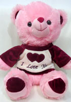 send gifts to bangladesh, send gift to bangladesh, banlgadeshi gifts, bangladeshi Pink Teddy Bear